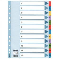 Regiszter, laminált karton, A4, 1-12, ESSELTE